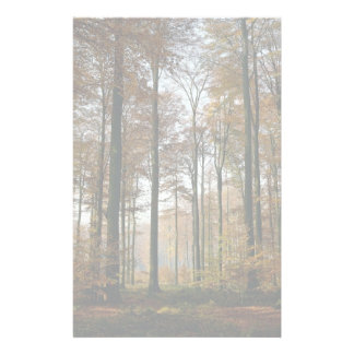 Forest from the Forest Personalized Stationery