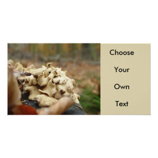 Forest Fungi #5 Customized Photo Card