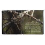 Forest Fuzz; 2013 Calendar iPad Folio Cases