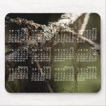 Forest Fuzz; 2013 Calendar Mousepad