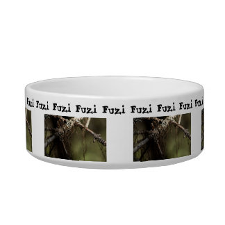 Forest Fuzz; Customizable Bowl