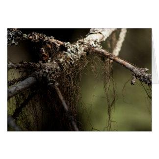 Forest Fuzz; Customizable Card