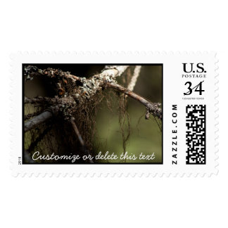 Forest Fuzz; Customizable Postage Stamp