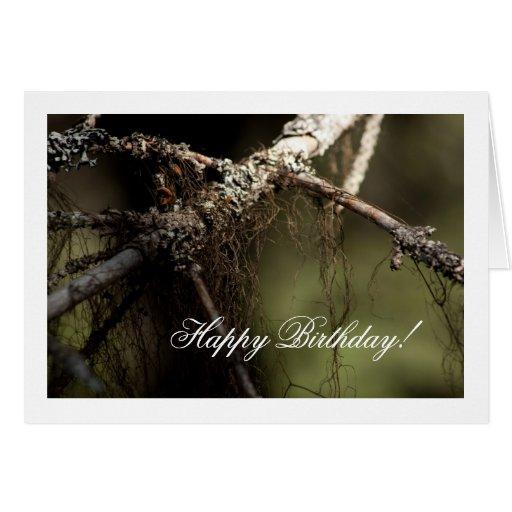 Forest Fuzz; Happy Birthday Greeting Card