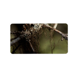 Forest Fuzz Label