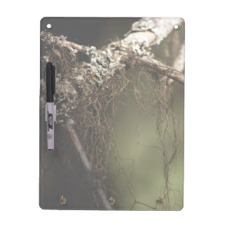 Forest Fuzz; No Text Dry-Erase Board