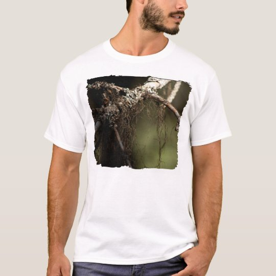 Forest Fuzz; No Text T-Shirt