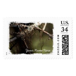 Forest Fuzz Postage