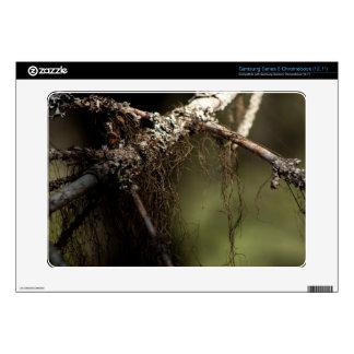 Forest Fuzz Samsung Chromebook Decals