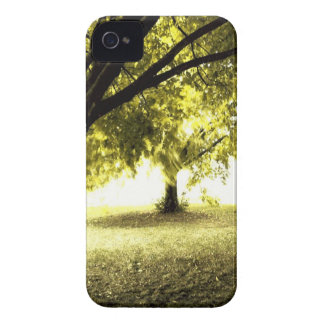Forest Ghostly Sunshine Case-Mate iPhone 4 Case