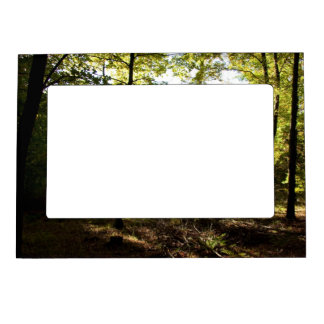 Forest glade magnetic picture frame