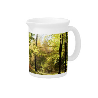 Forest glade pitchers