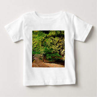 Forest Going Home Silver Falls Park Shirt