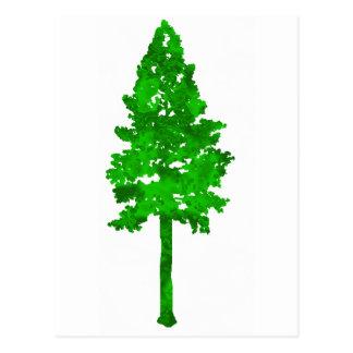 Forest Green de la lluvia Tarjeta Postal