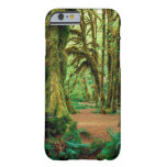 Forest Hall Of Mosses Olympic iPhone 6 Case