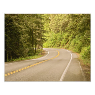 Forest Highway Photo Print