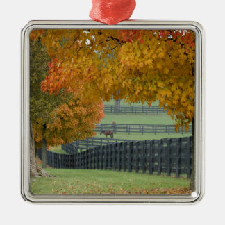 Forest Horsefarm Countryside Metal Ornament