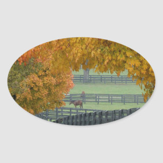 Forest Horsefarm Countryside Oval Sticker