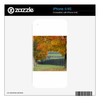 Forest Horsefarm Countryside Skins For iPhone 4S