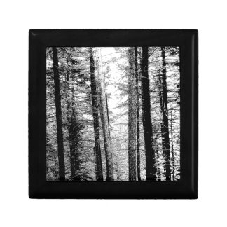 Forest in Black and White Gift Box