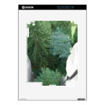 Forest in germany iPad 2 decal