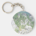 Forest in germany keychain