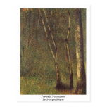 Forest In Pontaubert By Georges Seurat Post Cards