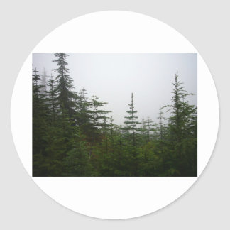 Forest in the Mist Classic Round Sticker