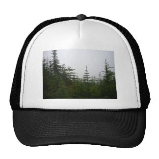 Forest in the Mist Mesh Hats