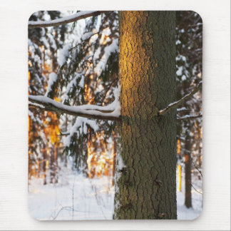 Forest in the winter mouse pad