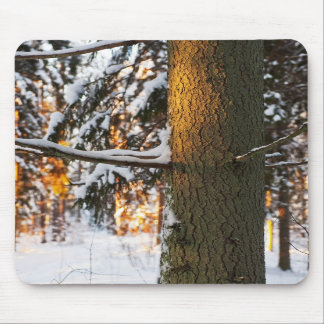 Forest in the winter mousepad