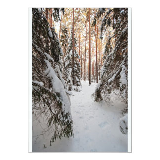 Forest in winter card