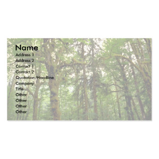 Forest interior, Washington Double-Sided Standard Business Cards (Pack Of 100)