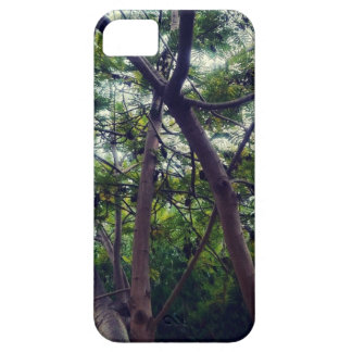 Forest iPhone 5 Case