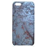 Forest iPhone Case iPhone 5C Case