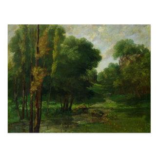 Forest Landscape, 1864 Postcard