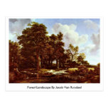 Forest Landscape By Jacob Van Ruisdael Post Card
