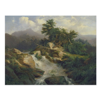 Forest Landscape with Waterfall Postcard