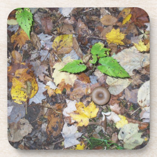 Forest Leaves Coaster