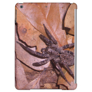 Forest Leaves Nature Spider Spiders iPad Case