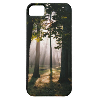 Forest Light  iPhone 5 Case