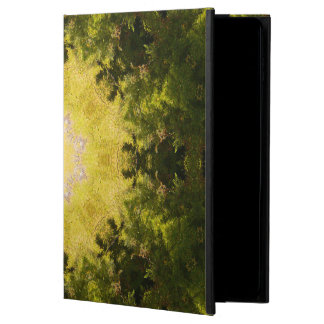 Forest Lore Mandala Powis iPad Air 2 Case