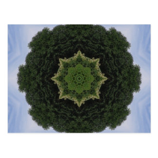 Forest Mandala Post Card