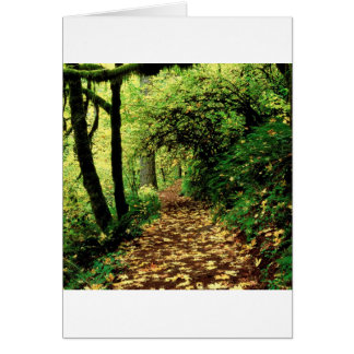 Forest Maple Lined Silver Trail Silver Falls Card