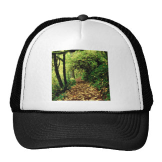 Forest Maple Lined Silver Trail Silver Falls Trucker Hat