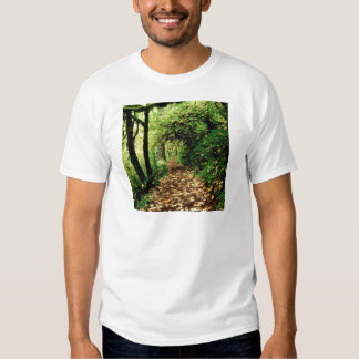 Forest Maple Lined Silver Trail Silver Falls Shirt