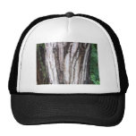 Forest Maple Trucker Hat
