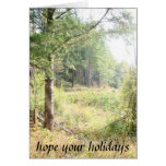 Forest Meadows Holidays Card