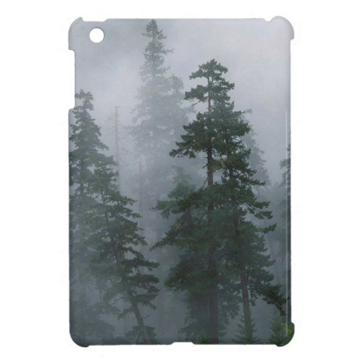 Forest Mist Clearing Storm Mount Hood Case For The iPad Mini