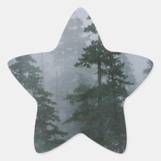 Forest Mist Clearing Storm Mount Hood Star Sticker